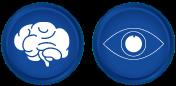 Support Brain & Eyes Development