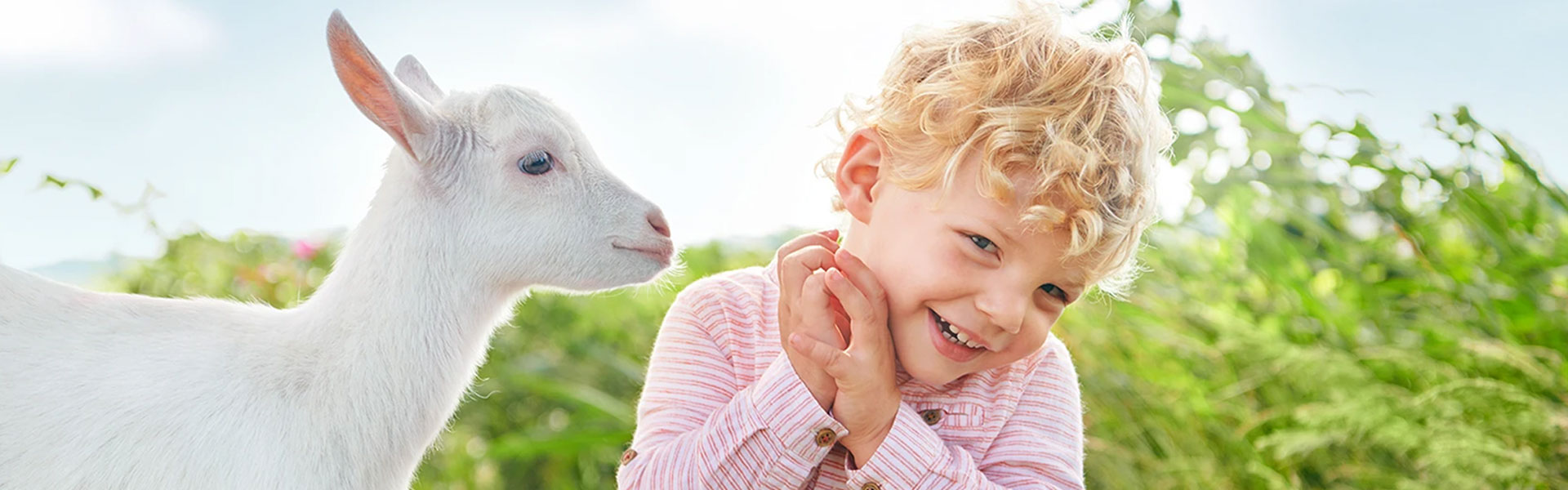 Kabrita - Easy to Digest Goat Milk for Babies
