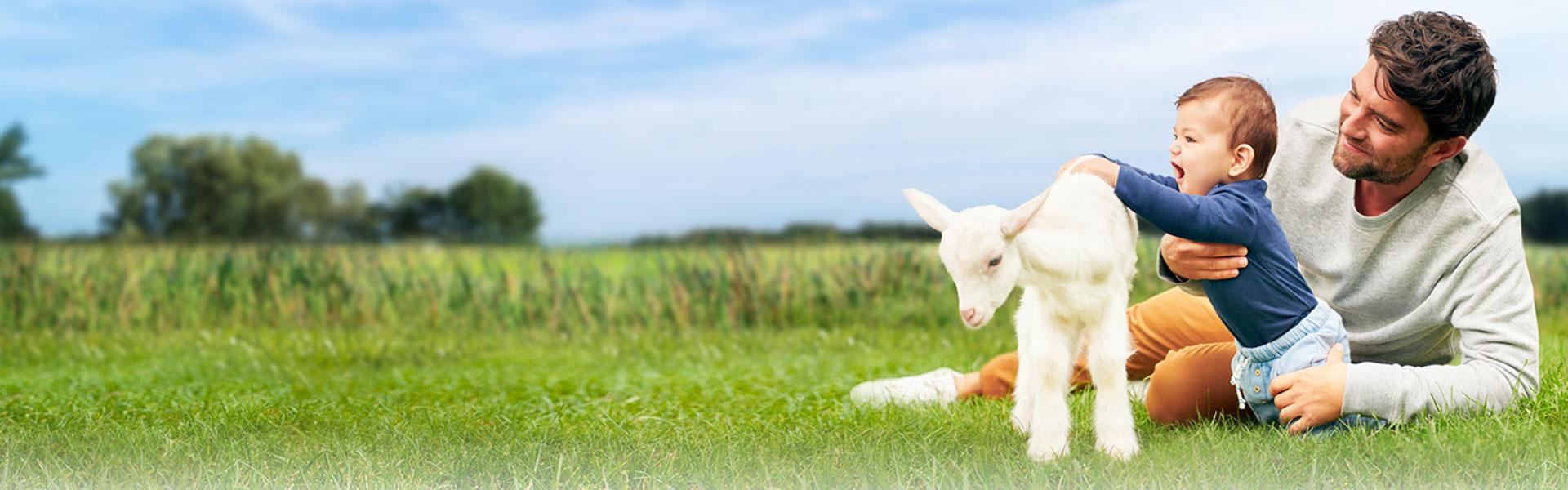 Kabrita Goat Milk Based  Infant Formula 0-12 Months (400g)